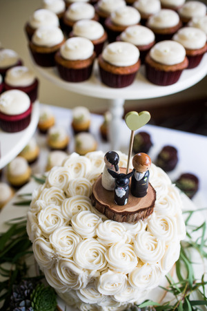 topper: Cute bride, groom, and dog wedding cake topper with cupcakes in the background