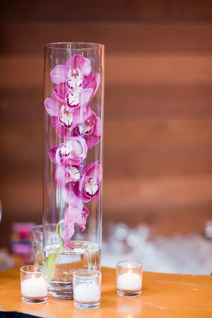 purple orchid in a tall vase