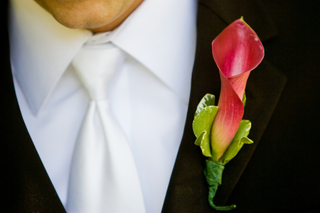 boutonniere: Groom wearing a red and green boutonniere