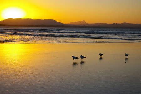byron: sunset byron bay, new south wales