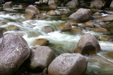 eddy: rapids, cairnsm queensland