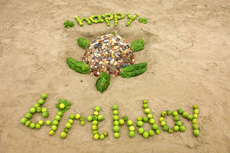 turtles love: happy birthday in the sand Stock Photo
