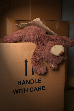 Old teddy bear hanging out of a cardboard box in the loft Banco de Imagens
