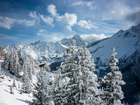 A view across trees to the mountains on a sunny, snowy day in the French Alps above Chamonix