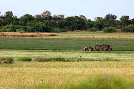 rural development: Farmer in Africa working in his field.