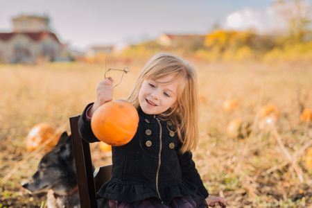 Child playing in the pumpkin field on Halloween 免版税图像