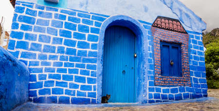 Cat in Chefchaouen Stock Photo