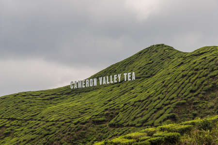 Cameron Highlands Malaysia. 10 March 2019.A cameron valley tea sign in tea plantations in the cameron highlands in Malaysia