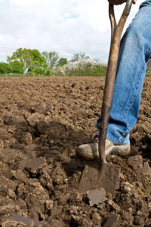 Close up of someone pushing a spade into soil with his foot in the process of digging