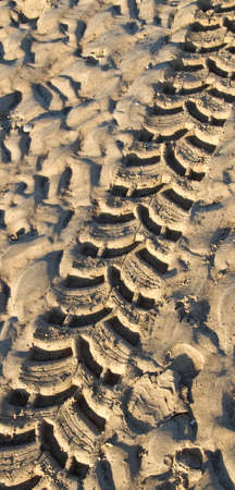 Tyre track in wet sand on a beach at sunset Stock Photo - 7314123