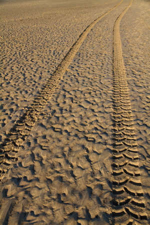 Tyre tracks in wet sand on a beach at sunset Stock Photo - 7314202