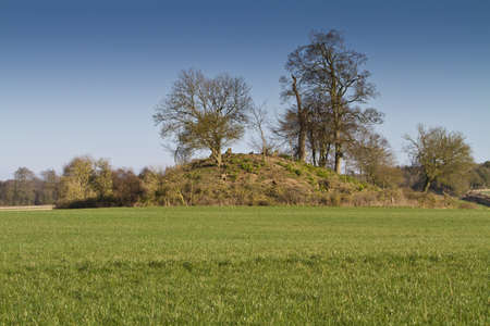 neolithic: �rbol cubierto t�mulo neol�tico entierro, Dorset Reino Unido