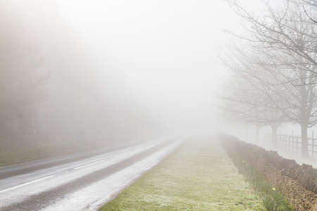 grass verge: English country road disappearing into fog Stock Photo