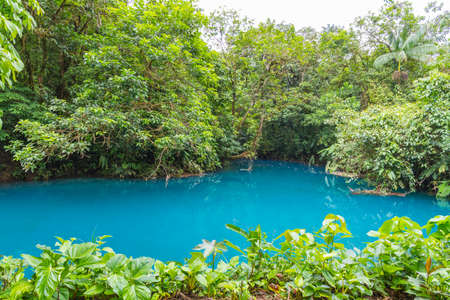 celeste: Rio Celeste, famous for its blue colour due to disolved salts from the Tenorio Volcano. It flows through forest on the flank of the volcano in Costa Rica