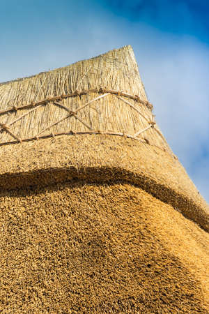 apex: Apex of a freshly thatched cottage roof in an English country village
