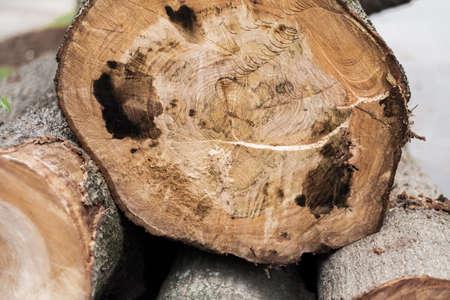 Cortar madera Foto de archivo - 79386383