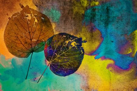 saturated: leaves on grunge saturated background