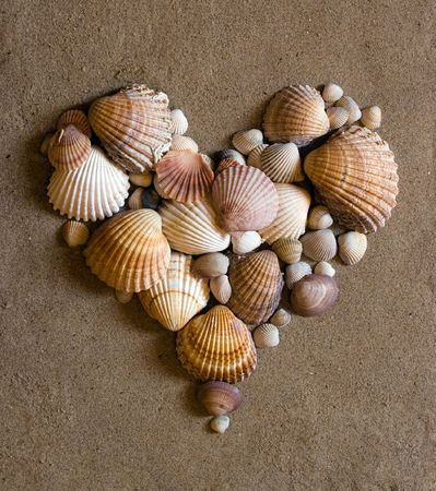 wedding beach: shell heart Stock Photo