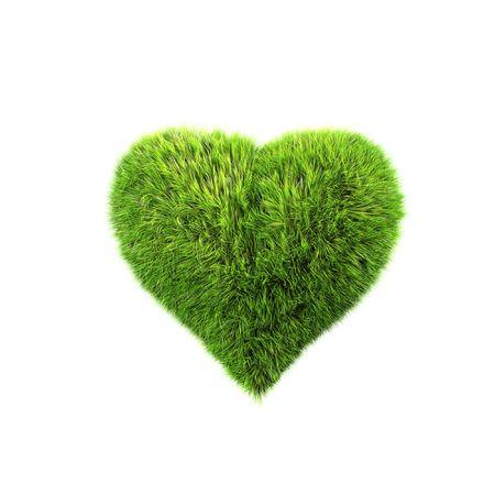 grass heart photo