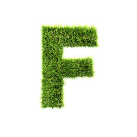 Grass letter - f photo