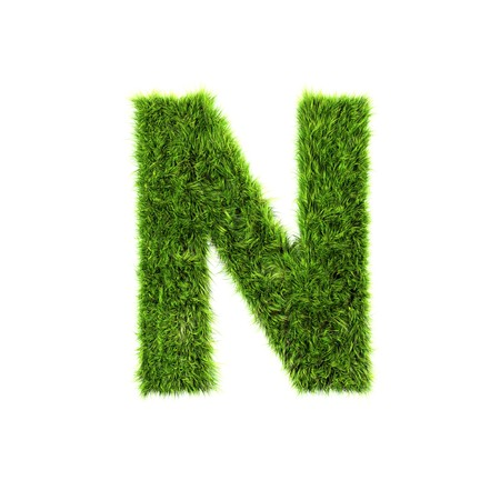 Grass letter - n Stock Photo - 7488152