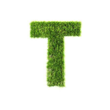 t background: Grass letter - t