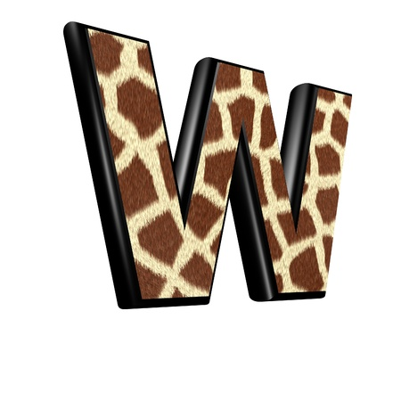 3d letter with giraffe fur texture - W photo