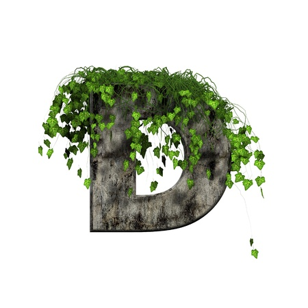 green ivy on 3d stone letter - d