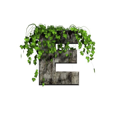 green ivy on 3d stone letter - e photo