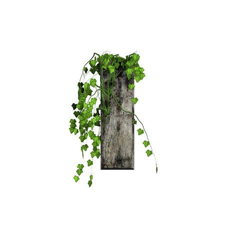 green ivy on 3d stone letter - i photo