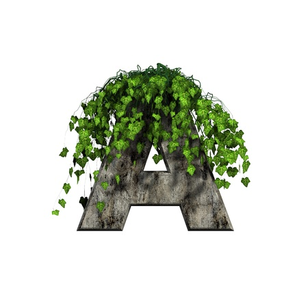 green ivy on 3d stone letter - a