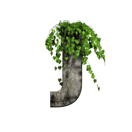green ivy on 3d stone letter - j photo
