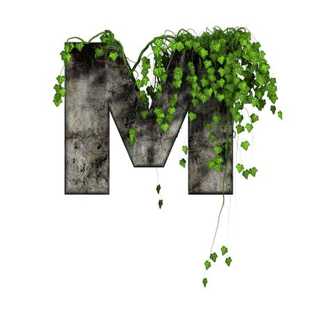 green ivy on 3d stone letter - m photo