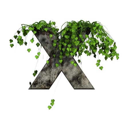 green ivy on 3d stone letter - x photo