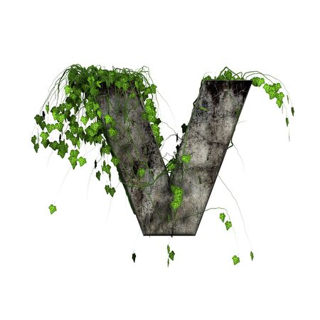 green ivy on 3d stone letter - v photo