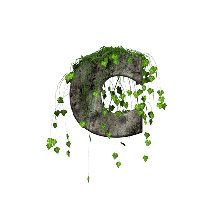 green ivy on 3d stone letter - c
