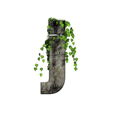 green ivy on 3d stone letter - j Stock Photo - 11994683