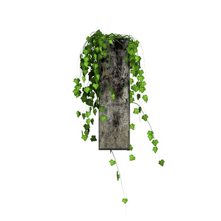 cracked wall: green ivy on 3d stone letter - l