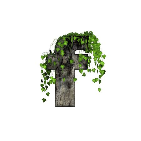green ivy on 3d stone letter - f photo