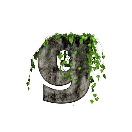 green ivy on 3d stone letter - g photo