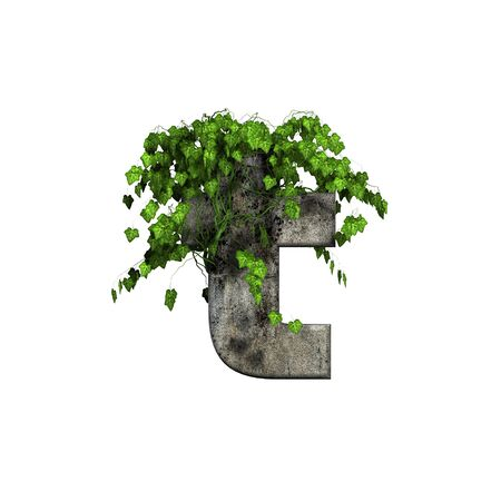 green ivy on 3d stone letter - t Stock Photo - 11994695