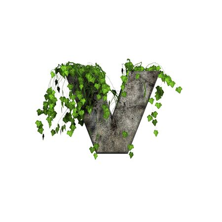 cracked wall: green ivy on 3d stone letter - v