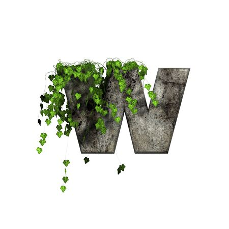 green ivy on 3d stone letter - w photo