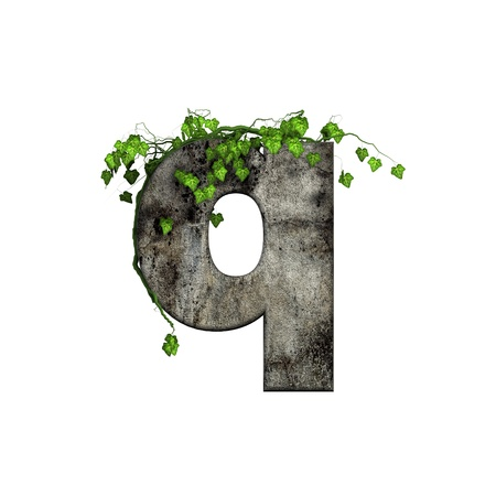 green ivy on 3d stone letter - q photo