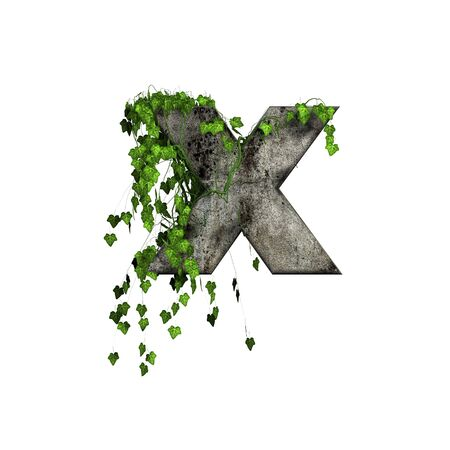 letter case: green ivy on 3d stone letter - x
