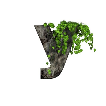 ivy wall: green ivy on 3d stone letter - y