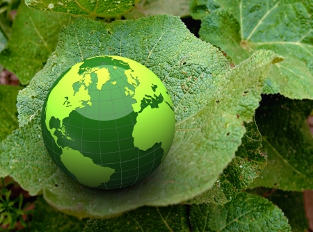 3d green earth on a leaf photo