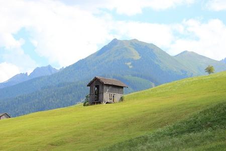 hay field: Rifugio unico in campo di fieno nelle Alpi