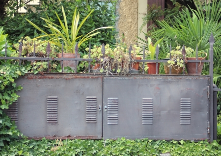 eletrical: Plants and pots on an eletrical box outside