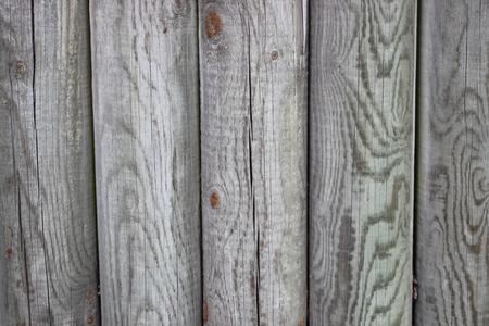 impregnated: Recinzione di legno di pali impregnati